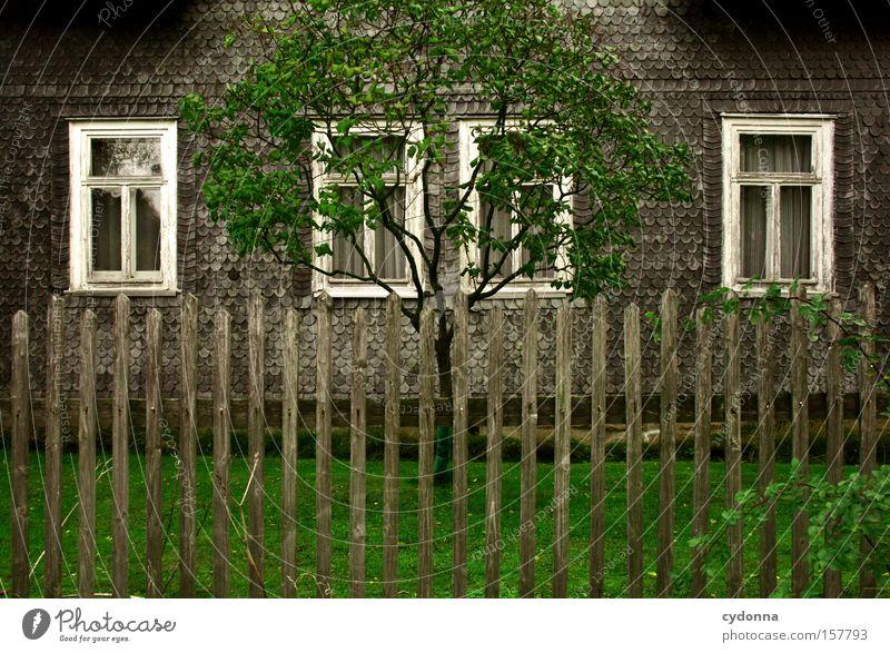 Heimatromantik Baum grün Haus Leben Wiese Fenster Garten Zeit Romantik Vergänglichkeit Zaun Gardine Symmetrie Heimat altmodisch