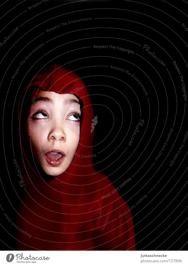 Rotkäpperich lebt Kind Junge Kommunizieren Wissenschaften frech Kapuze erstaunt