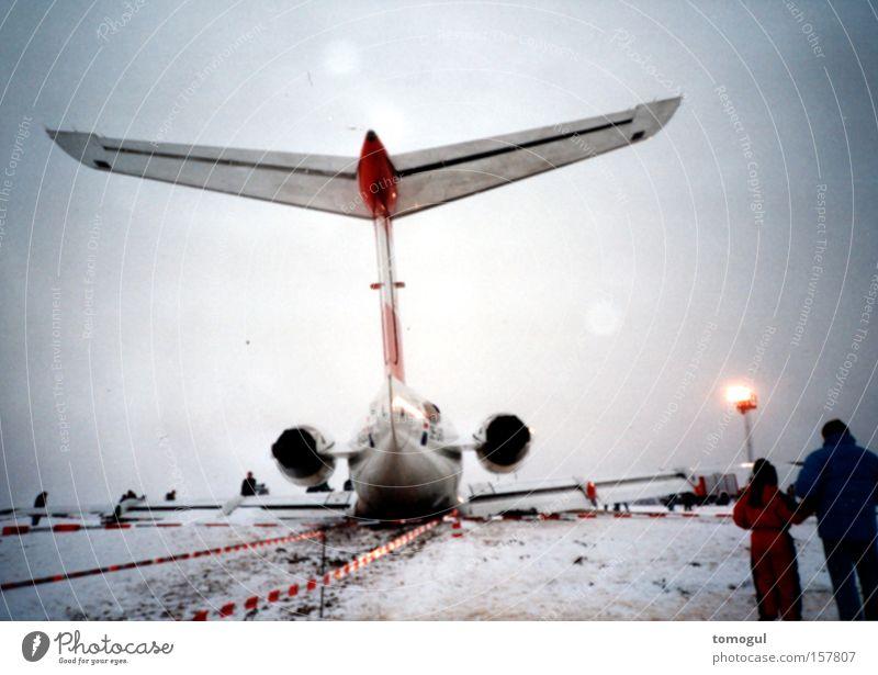 lahmer Vogel Glück Flugzeug Luftverkehr gefährlich Schmerz Desaster Schwäche Düsenflugzeug Passagierflugzeug leistungsstark Notlandung