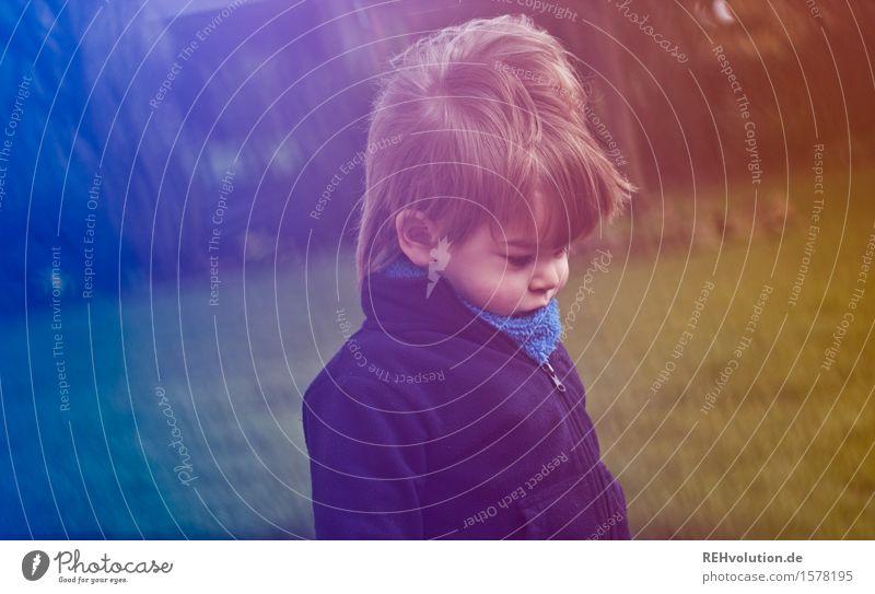 eiersuche Kind Kleinkind 1 Mensch 1-3 Jahre klein Kindheit Wind Garten Frühling unterwegs Suche entdecken Konzentration Farbfoto Außenaufnahme Experiment