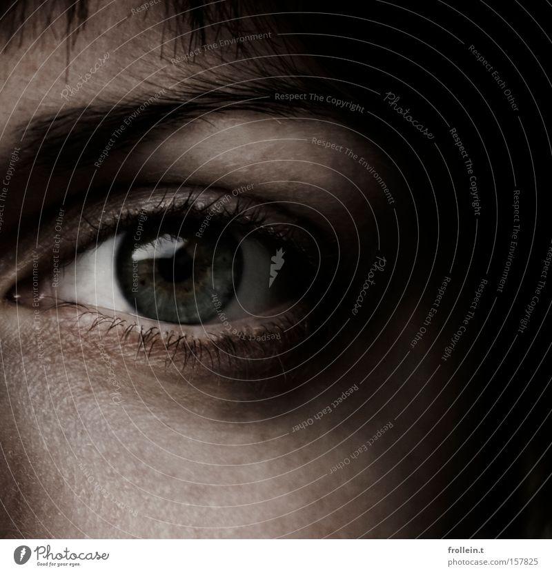 Spooky eyeball dunkel Reflexion & Spiegelung Gesicht Wange Schatten schwarz Angst Klarheit Innenaufnahme Makroaufnahme Nahaufnahme Auge Haare & Frisuren