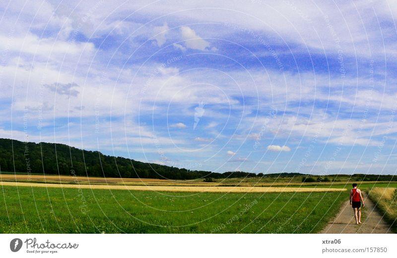 schnee? ich seh nichts Mann Himmel Sommer Wiese Gras Wege & Pfade laufen Spaziergang