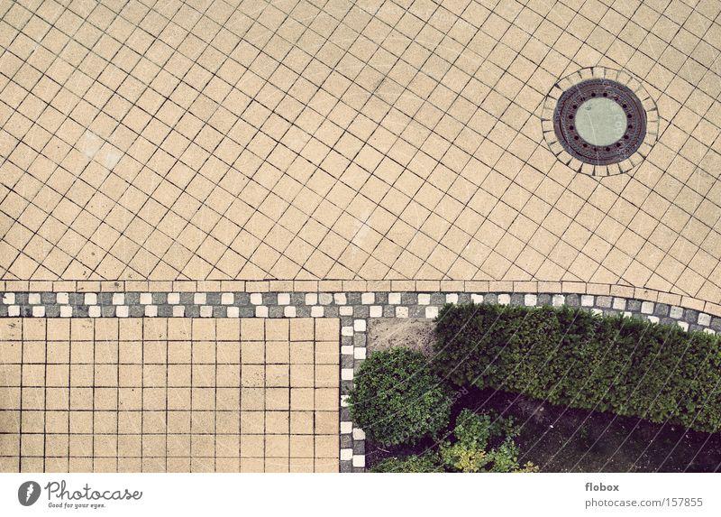 nicht so spannend Straße Hof Muster Kopfsteinpflaster Pflastersteine Rahmen Strukturen & Formen Vogelperspektive Gully Einfahrt Sauberkeit Ordnung Blumenbeet