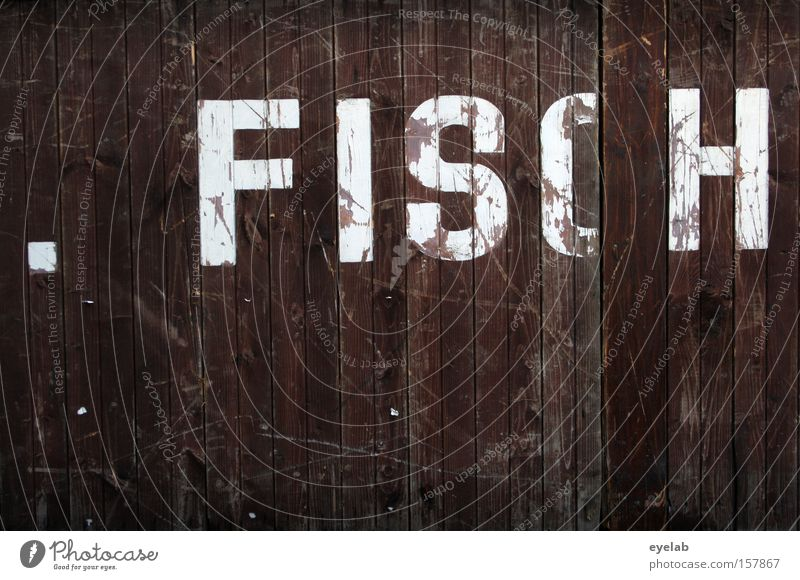 . FISCH alt weiß Wand Holz Gebäude braun Wohnung Fisch Kommunizieren Schriftzeichen Buchstaben Punkt Hütte Typographie Holzbrett Wort