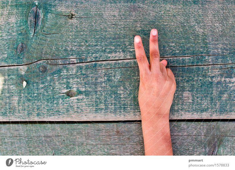 Hand, Zahlen und Holz Mensch Frau Mann alt grün weiß Baum Erholung Freude Mädchen schwarz Erwachsene sprechen Liebe Gefühle