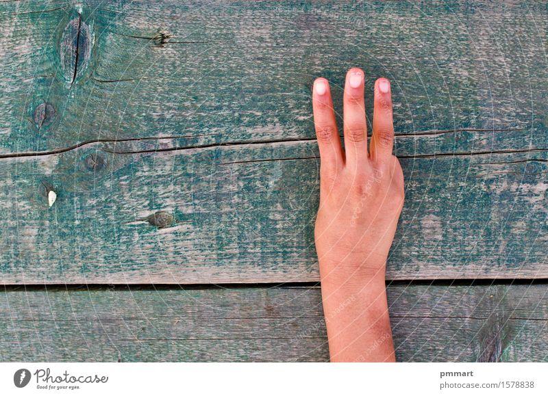 Hand, Zahlen und Holz Mensch Frau Mann alt grün weiß Baum Mädchen schwarz Erwachsene Junge Schule Business braun