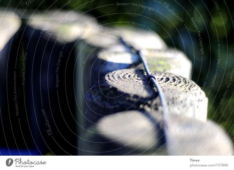 Zaunzeug rund Holz Pfosten Sichtschutz Abtrennung Draht Verbundenheit Reihe hintereinander Zusammenhalt Makroaufnahme Nahaufnahme in einer Reihe