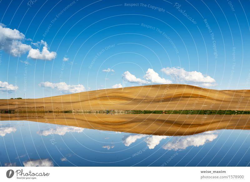 Himmel Natur Ferien & Urlaub & Reisen blau schön Sommer weiß Landschaft Wolken Umwelt gelb Frühling natürlich See Feld frisch