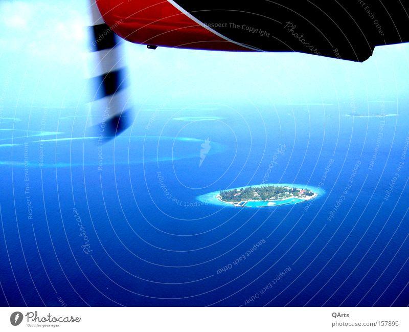 Air Taxi IV Wasserflugzeug Malediven Insel Meer Atoll Riff Flugzeug Ferien & Urlaub & Reisen Indischer Ozean exotisch fliegen Luftverkehr Asien Inselwelt