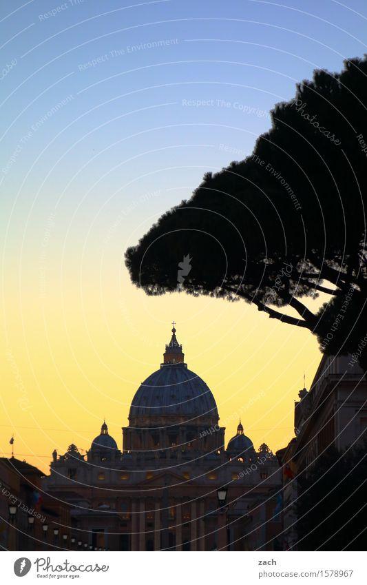 Chez Peter Ferien & Urlaub & Reisen Sightseeing Städtereise Himmel Sonnenaufgang Sonnenuntergang Baum Pinie Rom Vatikan Italien Stadt Hauptstadt Stadtzentrum