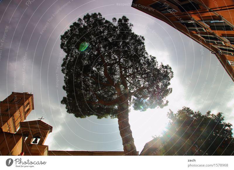 Mittelpunkt Himmel Stadt alt Pflanze Baum Wolken Haus Fenster Wand Religion & Glaube Mauer Fassade Regen Kirche Platz Italien