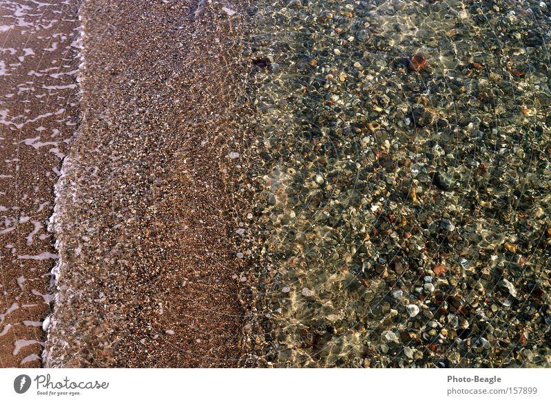 Imbiß am Valentinstag Ostsee Meer Wasser Strand Wellen Sand Stein Muschel nass Meerwasser Brandung Ferien & Urlaub & Reisen