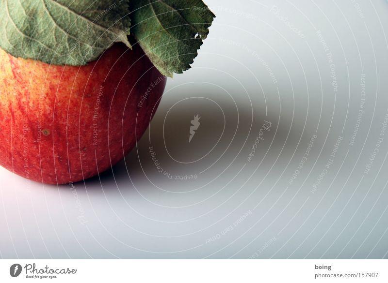 Apfel Blatt Frucht Bioprodukte Qualität Biologische Landwirtschaft Snack Apfelbaum biologisch Obstbau Streuobstwiese