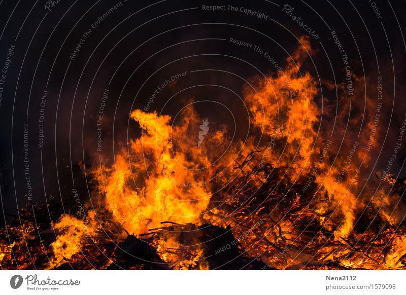 Out of control Feuer Brand Frühling Sommer bedrohlich fantastisch orange Freude Flamme heiß Osterfeuer Rauch Glut glühen glühend brennen heizen Feuerstelle