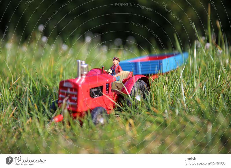 Arbeit ruft! Spielen Tourismus Arbeit & Erwerbstätigkeit Handwerker Landwirtschaft Forstwirtschaft Mensch Natur Landschaft Pflanze Erde Sonnenlicht Frühling