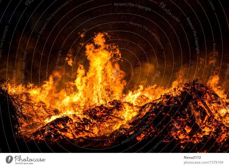 Burn out Freizeit & Hobby Feuer Frühling Sommer bedrohlich fantastisch heiß orange Freude flamme Osterfeuer Brand Rauch Glut glühen glühend brennen heizen