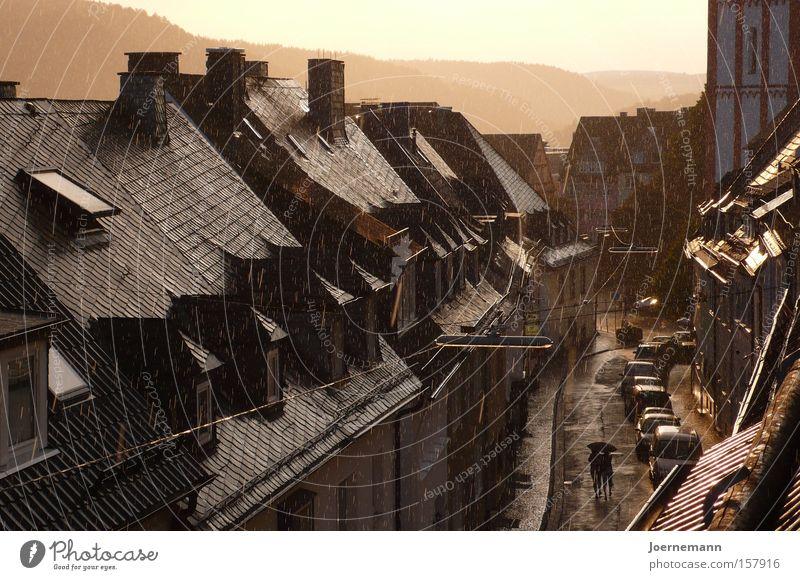 Goldregen Straße Paar Regen gold Dach Regenschirm Gewitter Nostalgie Gasse Altstadt Abendsonne Penthouse Dachgaube