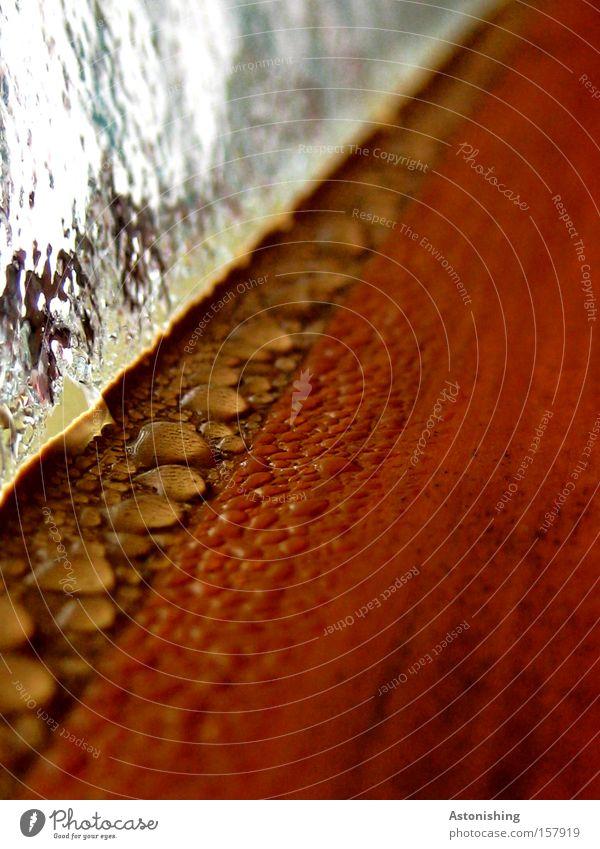 undicht? Wasser Fenster Holz braun Glas nass Wassertropfen Perspektive Bad Tropfen feucht Fluchtpunkt
