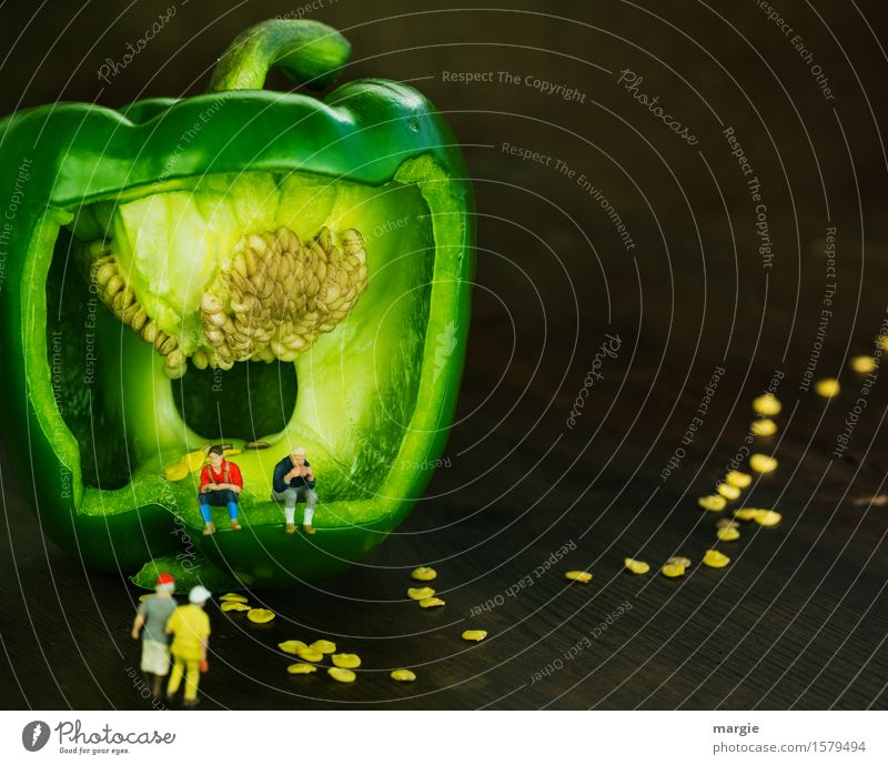 Miniwelten -Pause im Grünen Lebensmittel Gemüse Salat Salatbeilage Picknick Bioprodukte Vegetarische Ernährung Diät Fastfood Ausflug wandern Mensch maskulin