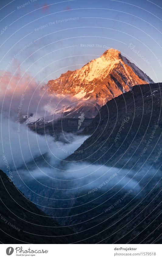 Goldener Gipfel Natur Ferien & Urlaub & Reisen Pflanze Sommer Landschaft Tier Ferne Berge u. Gebirge Umwelt Freiheit Tourismus Nebel wandern Ausflug