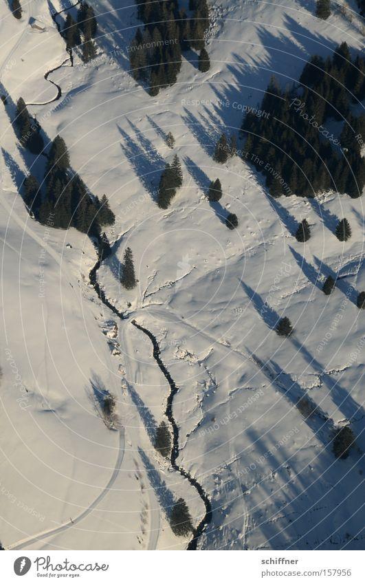 Vogel guckt runter III Baum kalt Schnee Landschaft Flugzeug Aussicht Tanne Bach Schwarzwald Mittelgebirge