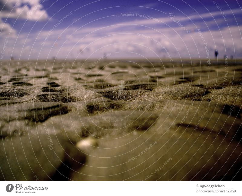 Knäckebrot Himmel Meer Sommer Strand Wolken Sand Küste Erde violett Niederlande