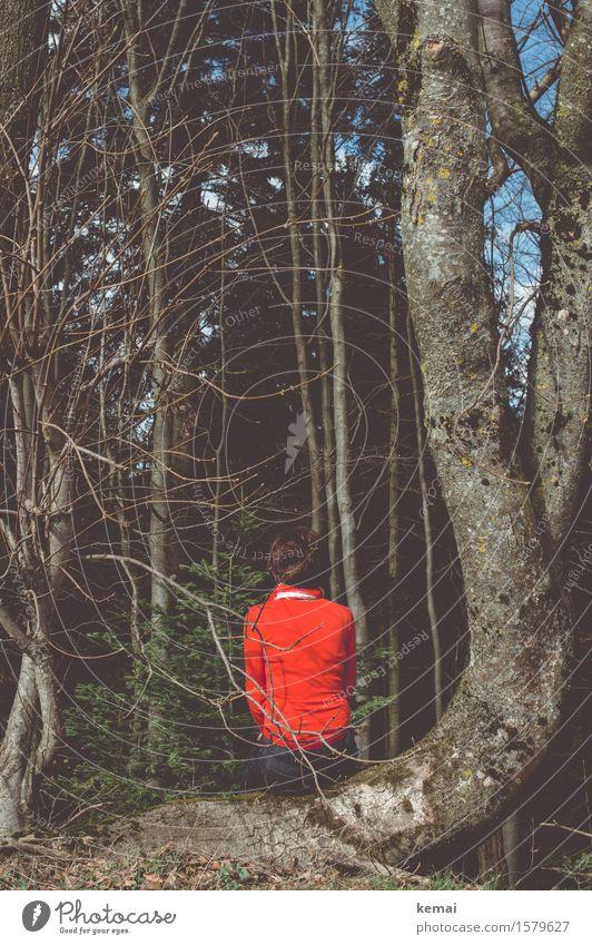 Schwarz sehen, rot anziehen elegant Stil Freiheit Mensch feminin Frau Erwachsene Leben Rücken 1 Umwelt Sonnenlicht Schönes Wetter Baum Zweig Wald schwarzhaarig