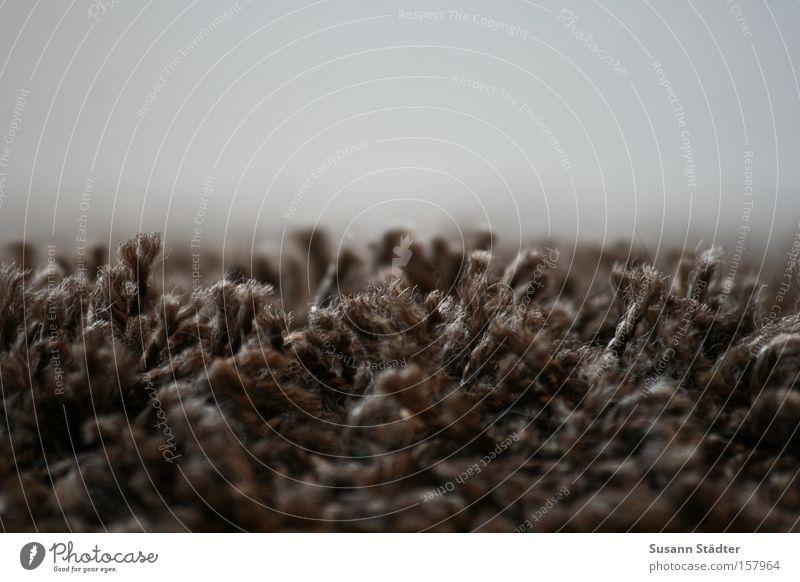 Fusselmonster Teppich dreckig Staub saugen Staubsauger Stoff Wolle Wärme Haare & Frisuren Friseur Friseursalon Makroaufnahme Nahaufnahme Pantoffeltierchen