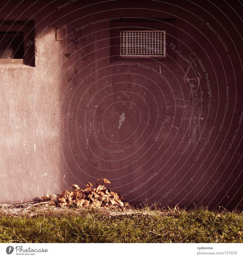 Pretty Wall Mensch Haus Leben Herbst Wand Beton Kommunizieren DDR Nostalgie Clown Block Heimat Ostalgie Wohngebiet