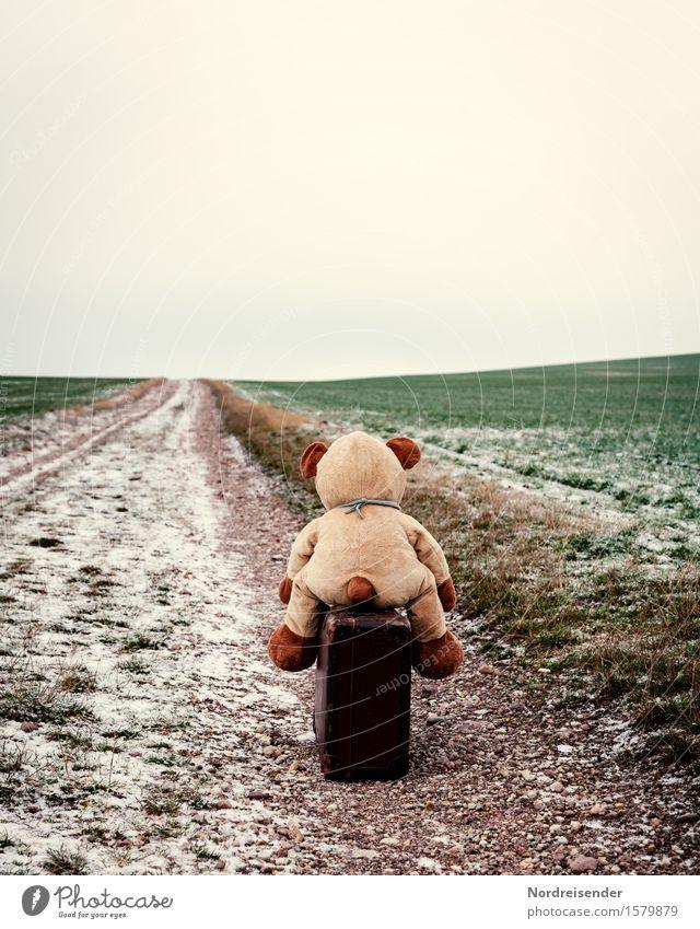 Vorwärts.... Freizeit & Hobby Natur Landschaft Winter schlechtes Wetter Eis Frost Feld Straße Wege & Pfade Koffer Spielzeug Teddybär Stofftiere Zeichen