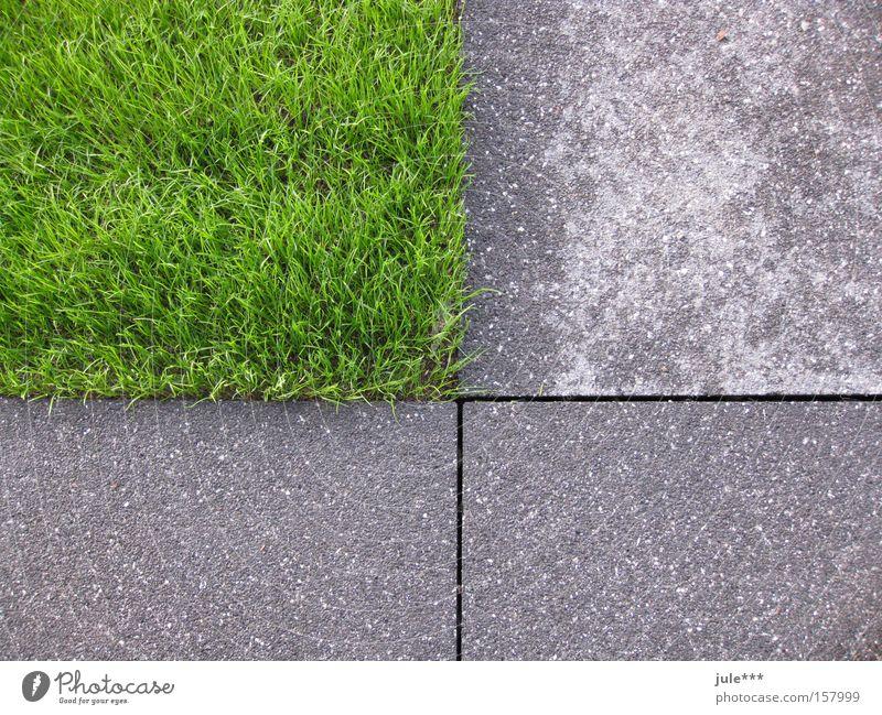 gevierteilt Gras grün grau Beton Asphalt Rechteck Vergänglichkeit Garten Park Rasen englischer Rasen Naturzerstörung geometrische Formen