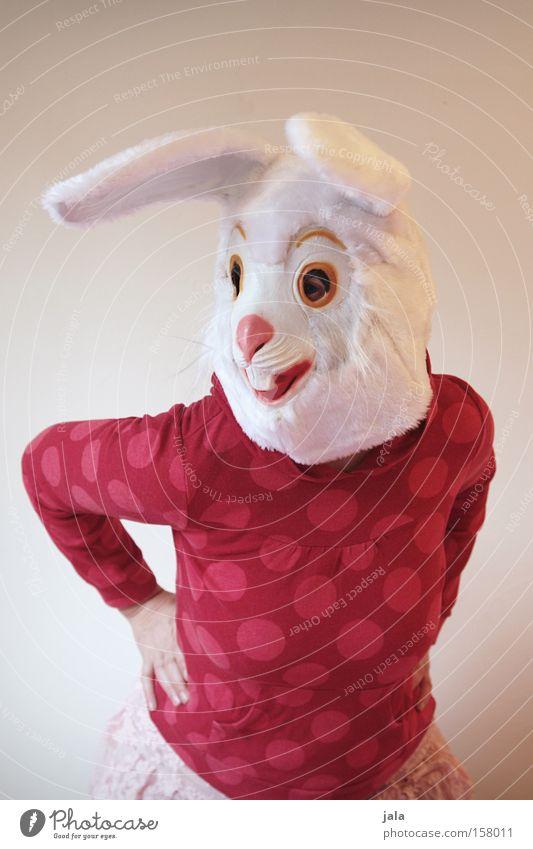 Schwing die Hüfte, Hasi Frau weiß Freude Tier Tanzen lustig Ostern Maske Karneval Hase & Kaninchen Kostüm Osterhase verkleiden