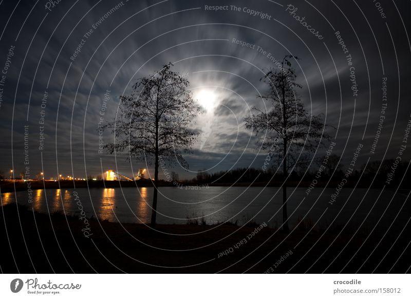 Mondschein überm See schön Baum Winter Wolken dunkel kalt Eis Stern (Symbol) Romantik gefroren Bayern Nacht Baggersee Kieswerk