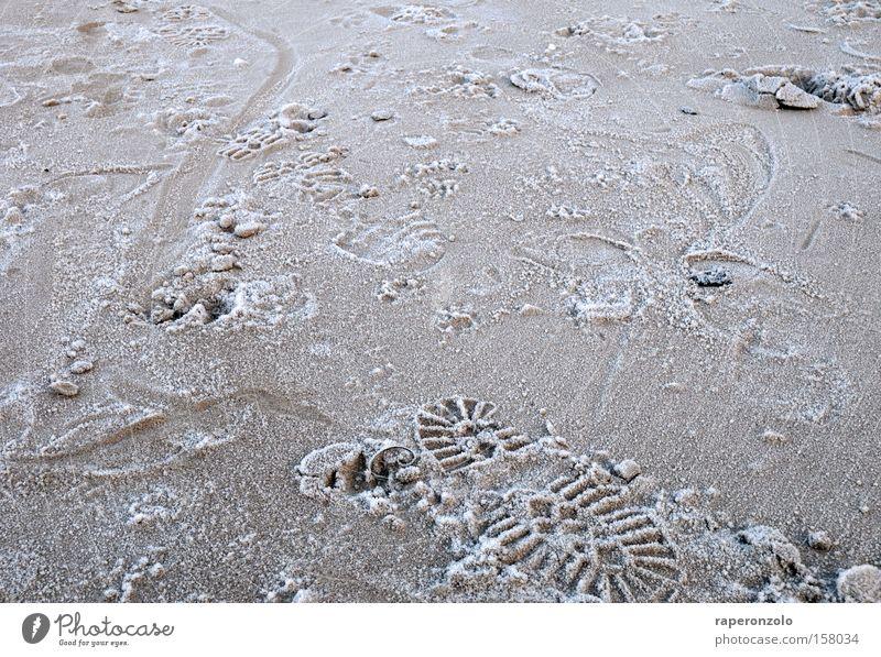 eindruck hinterlassen Winter kalt Sand Wege & Pfade Eis Erde Suche Vergänglichkeit Spuren Fußspur Reifenprofil schreiten Eindruck Fährte betreten