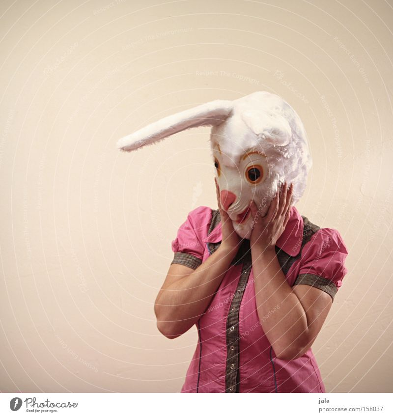 ich bin entzückt... Hase & Kaninchen Osterhase Ostern Karneval verkleiden Tier weiß lustig Frau Maske Kostüm Gefühle Freude