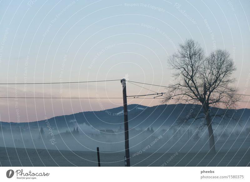 morgendliche leere Berge u. Gebirge Morgen Baum Elektrizität Landschaft Nebel trüb Natur Farbenspiel Sonnenaufgang Dämmerung Licht Winter Frühling Wiese