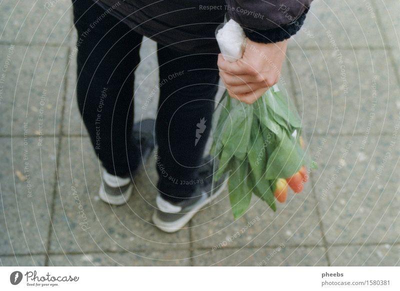 besuch der alten dame Hand Blume Mädchen Straße Frühling Wege & Pfade Beine Fuß Schuhe Blumenstrauß Tulpe Turnschuh dankbar