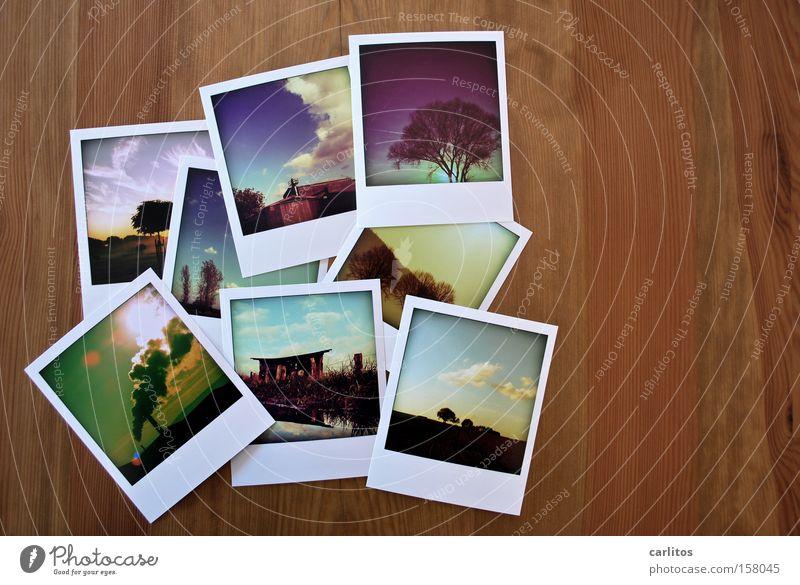 Deinem Downloadcredit Konto wurden 48 Credits gutgeschrieben. Tisch Holz Fotografie liegen Ecke Bild Polaroid Vergangenheit Quadrat analog