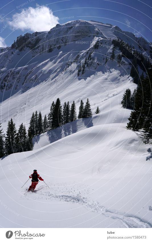 Skilehrer Natur Ferien & Urlaub & Reisen Landschaft Einsamkeit Winter Berge u. Gebirge Umwelt Schnee Tourismus Schönes Wetter Abenteuer Gipfel Alpen
