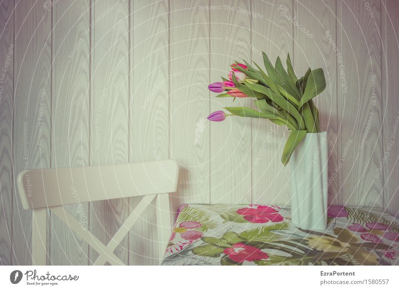 getäfelt und getulpt Frühling Blume Tulpe Blüte Blühend Häusliches Leben hell mehrfarbig weiß Blumenstrauß Stillleben Stuhl Tisch Tischwäsche Vase Wand