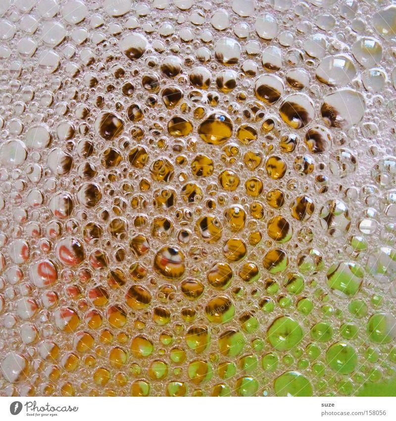 Bilderrätsel Geschirrspülen Blase Teller Strukturen & Formen Ordnung Wasser Sauberkeit Konzentration Spülmittel abstrakt anonym obskur Haushalt