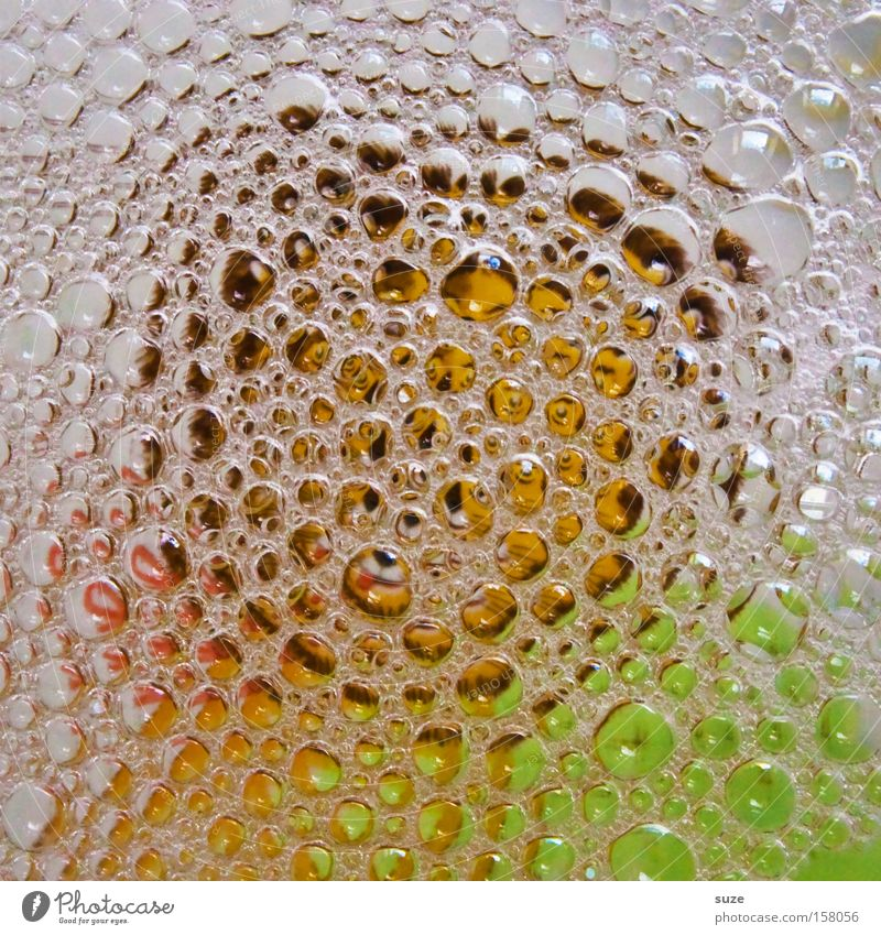 Bilderrätsel Wasser Ordnung Sauberkeit Konzentration Geschirr Reinigen Blase Teller obskur anonym Haushalt Geschirrspülen Spülmittel