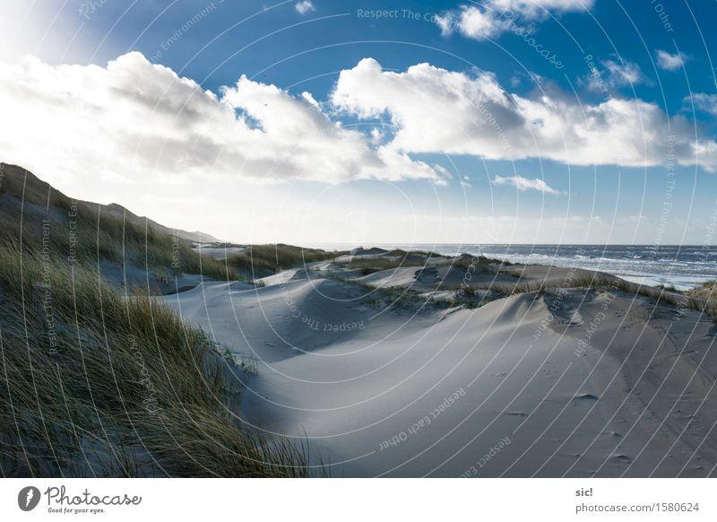 Aan Zee Natur Ferien & Urlaub & Reisen Stadt blau Wasser weiß Meer Erholung Landschaft Einsamkeit Wolken ruhig Strand kalt Gras Küste