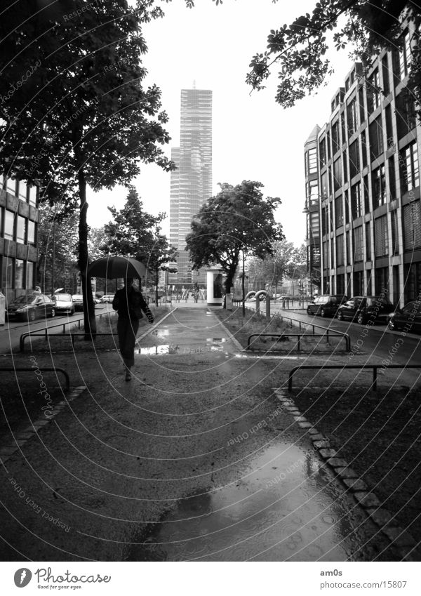Köln Mediapark Frau Wasser Baum Haus Regen Architektur nass Hochhaus Regenschirm Dame Gasse