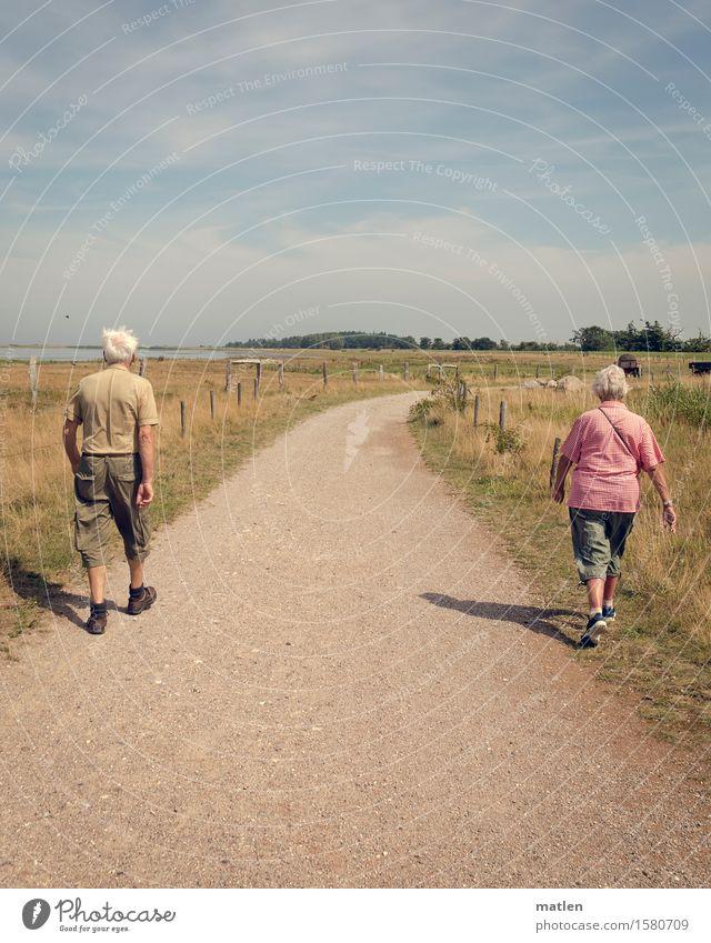 getrennt gemeinsam Mensch maskulin feminin Partner Senior Rücken 2 60 und älter laufen wandern Wege & Pfade Trennung Zusammensein weißhaarig sportlich Farbfoto