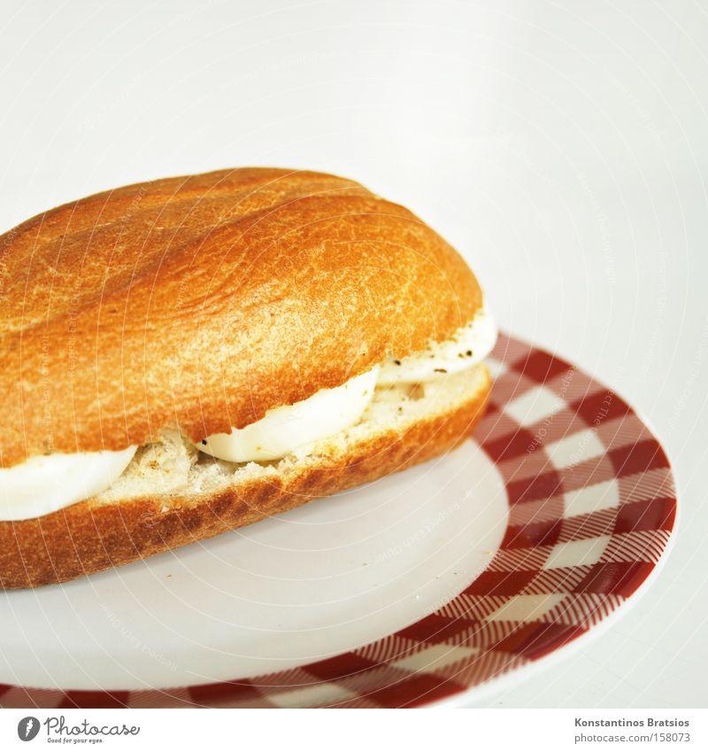 ...mit Ei Farbfoto Innenaufnahme Textfreiraum oben Teigwaren Backwaren Brot Brötchen Ernährung Frühstück Fastfood Teller Tisch Gastronomie frisch lecker weiß