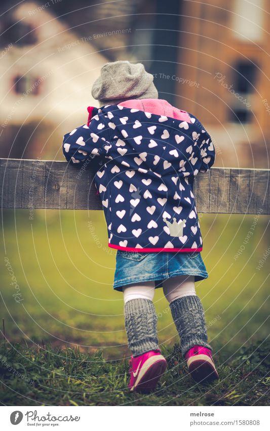 neugierig Mensch Kind Natur blau grün Mädchen Frühling Wiese Gras Mode braun rosa Kindheit stehen Schönes Wetter niedlich