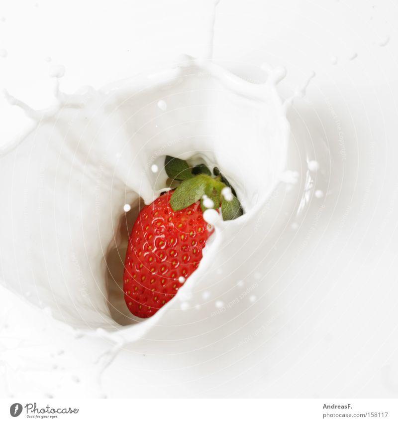 Erdbeershake Milch Erdbeeren Milchshake Milcherzeugnisse Frühstück Gesundheit Ernährung aromatisch Geschmackssinn Tropfen Frucht Joghurt Gastronomie