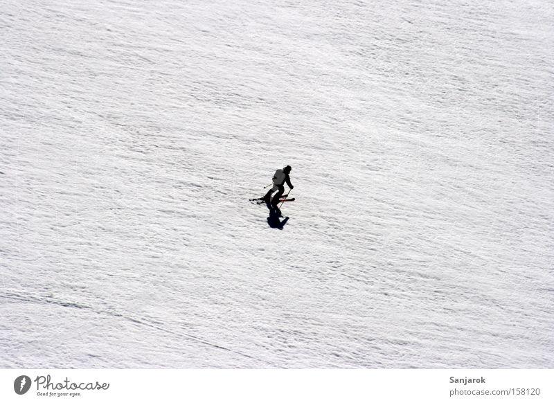 Einsamkeit Mensch weiß Winter schwarz Schnee Berge u. Gebirge Freiheit Eis hell klein Geschwindigkeit Skifahren fahren Frost Tourismus Alpen