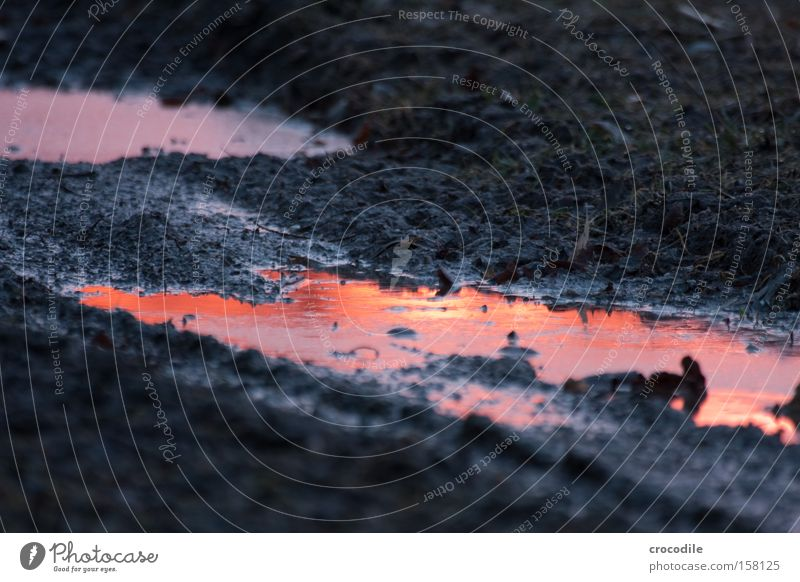Himmelstor Sonnenuntergang Pfütze Wasser Reflexion & Spiegelung dreckig Feld Fußweg Abenddämmerung rot orange schön Fluss Bach Illusion